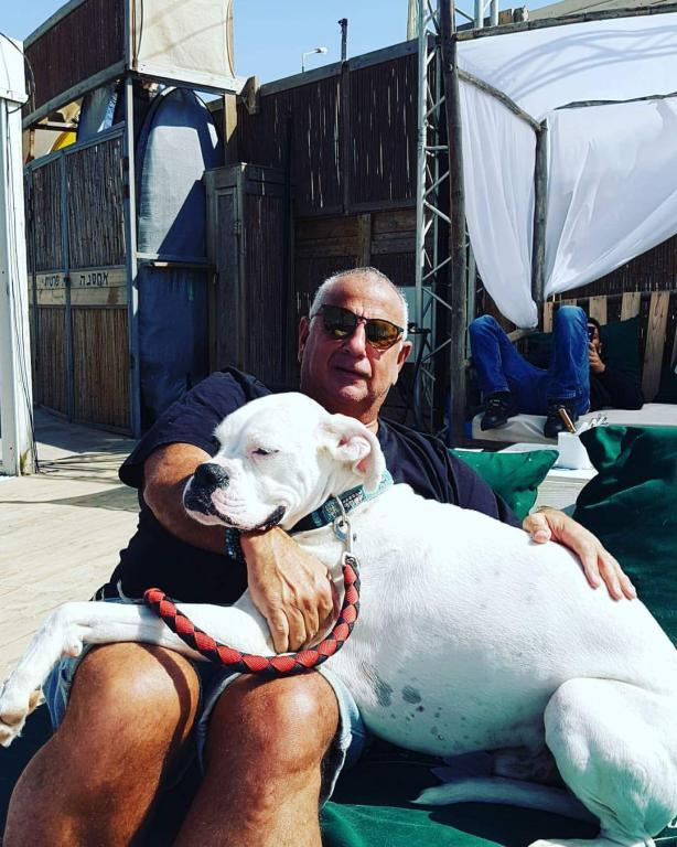 אהוב ונערץ... כתם כלבו של פדרינג אושיית חוף פולג