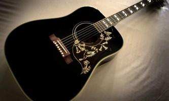 גיטרה אניטה טרגובוב