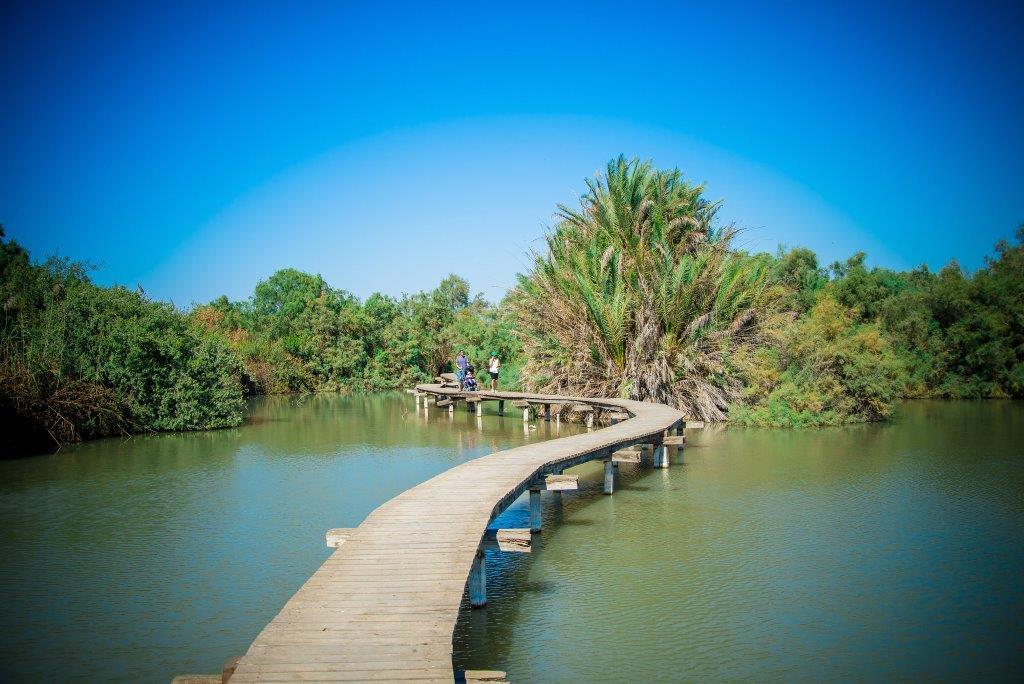 גן לאומי עין אפק צילום מנו גרישנפן