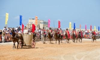 המלך הורדוס מופע סוסים חדש פסח 2016 צילום צופית דמרי 2