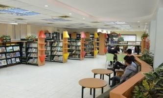 מדור חדש הספריה בתמר אריאל שפירא