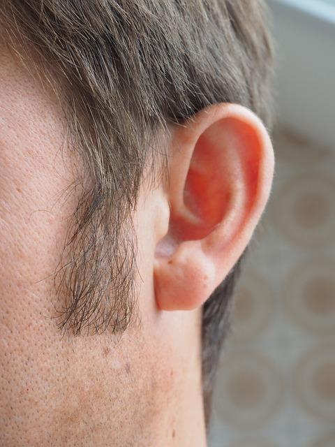 ear-1355652_640