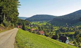 northern-black-forest-1270087_1280